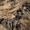 Маскировочные сети для охоты 2х3,  3х6,  4х6 метров,  фото Маскировка #1648958